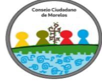 Consejo Ciudadano de Morelos logo